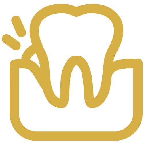 Tooth with healthy gums icon